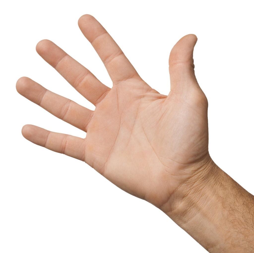 Реплантация пальца в Киеве